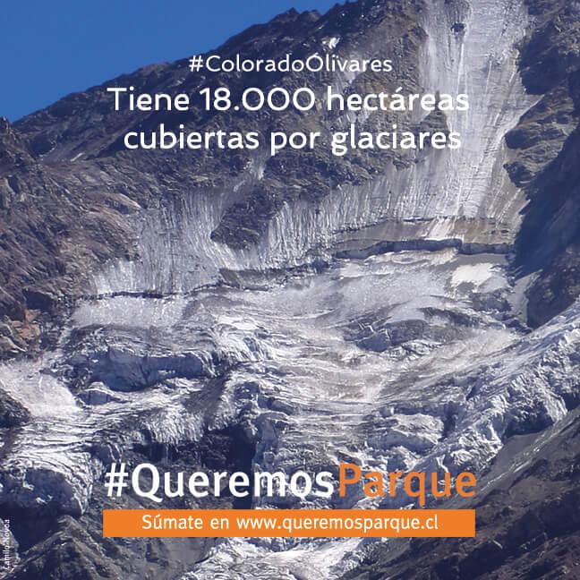 5 hectáreas glaciares WEB