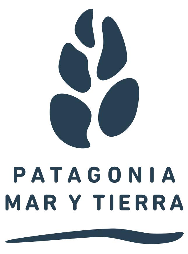 logo pmt web
